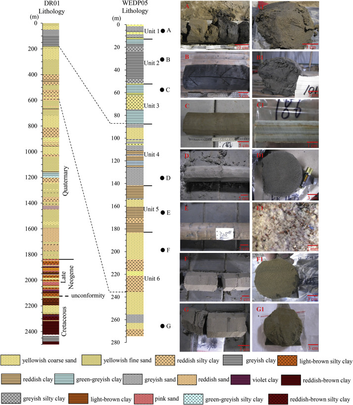 Paleomagnetic chronology and paleoenvironmental records from drill ...