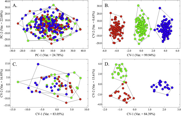 The Quantitative Assessment Of Archaeological Artifact Groups