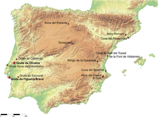 The consumption of tortoise among Last Interglacial Iberian