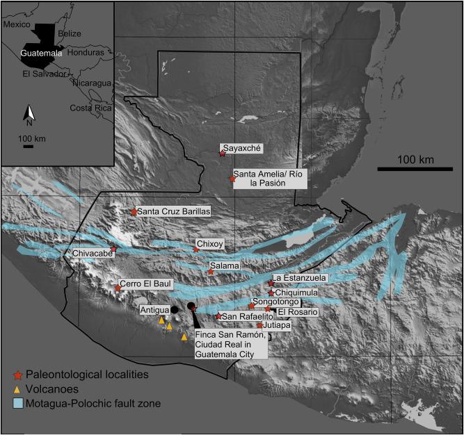 Guatemala S Late Pleistocene Rancholabrean Fauna Revision