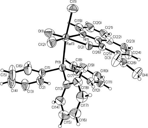 Reactivity Of Oxorheniumv Complexes Towards Quinoline Carboxylic