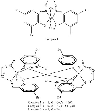Synthesis Structure And Properties Of Supramolecular Mnii Coii