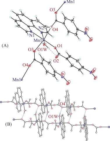 Manganeseii One Dimensional Coordination Polymers With