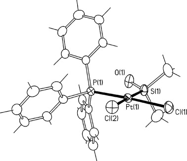 Antiproliferative Activity Of Platinumii Complexes Containing