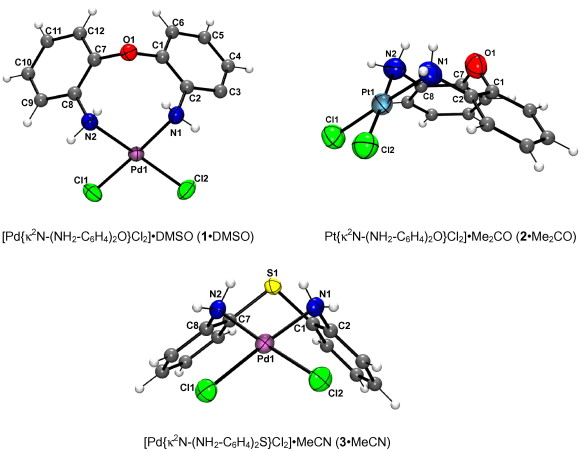 Hydrogen bond networks in five and eight membered palladium and