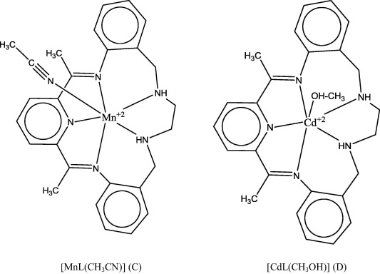 Synthesis Of Mnii And Znii Complexes With New Macrocyclic Schiff