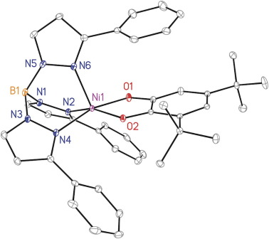 Synthesis And Characterization Of A Hydro Tris3 Phenylpyrazolyl