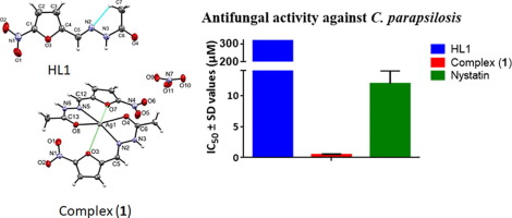 Structural studies and investigation on the antifungal