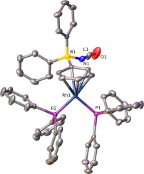 Structural Study Of Analogues Of Wilkinson's Compound [Rh(X)(PPh3)3] (X =  NCO, NCS, N3, N(CN)2) And Derivatives [Rh(NCO)(O2)(PPh3)3] And  [Rh(η6-C6H5B(NCO)Ph2)(PPh3)2] - ScienceDirect