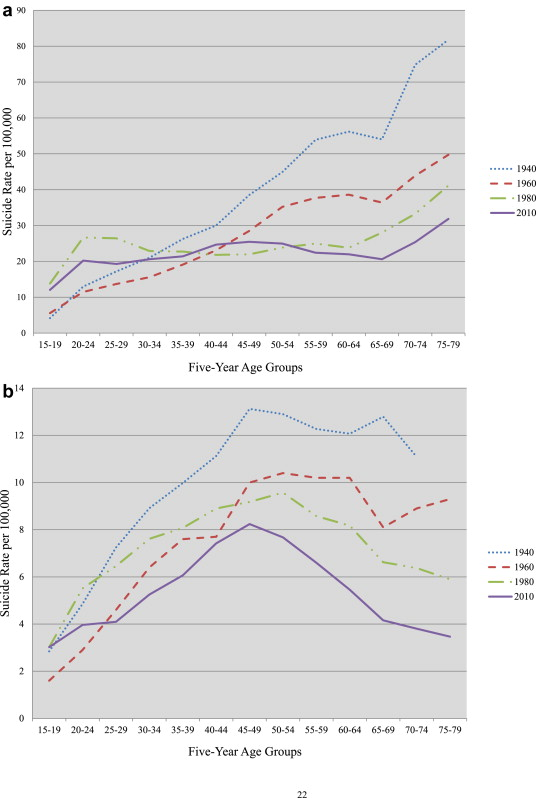 A Changing Epidemiology Of Suicide? The Influence Of Birth Cohorts On  Suicide Rates In The United States - ScienceDirect