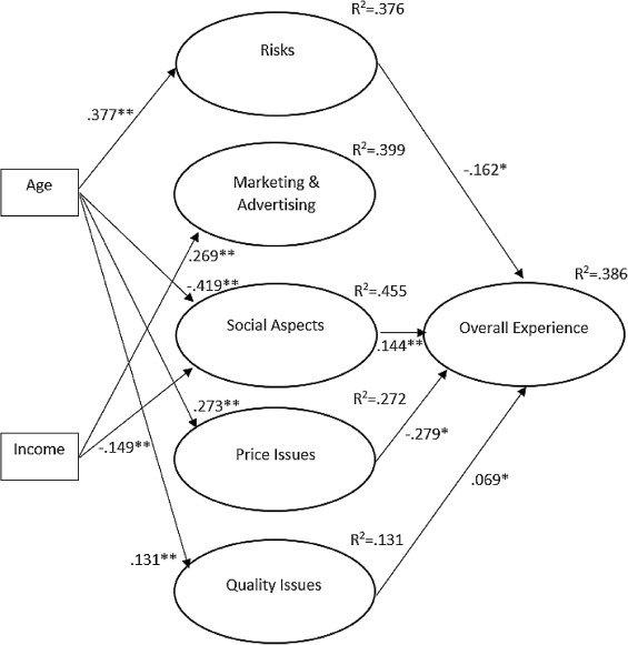 The complexity of consumer experience formulation in the