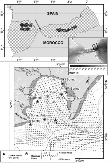 A Numerical Model Analysis Of The Tidal Flows In The Bay Of