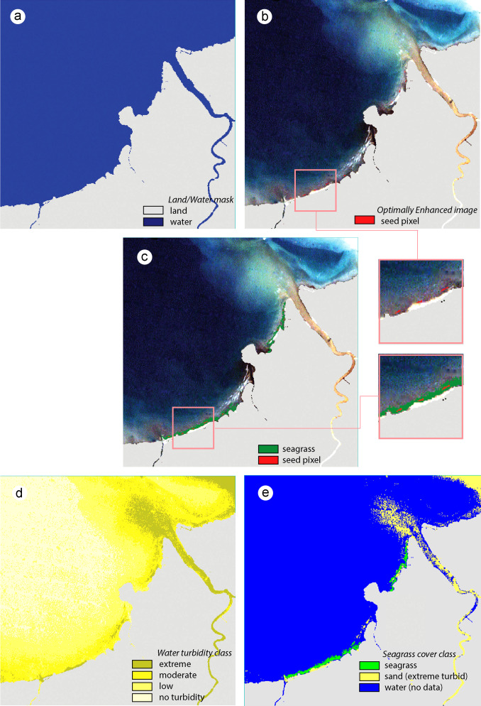 Application of Landsat images to seagrass areal cover change