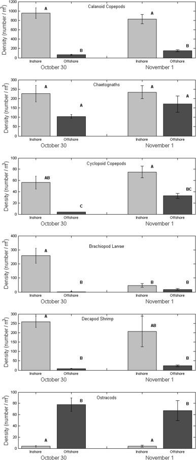 Estuarine influence on biogeochemical properties of the