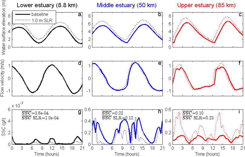 Hydro- and sediment dynamics in the Gironde estuary (France
