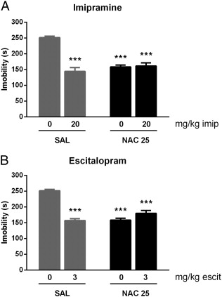 Interactive effects of N-acetylcysteine and antidepressants
