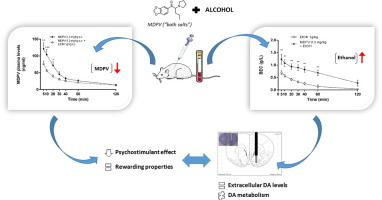 The combination of MDPV and ethanol results in decreased cathinone