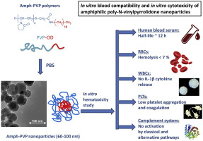 In vitro blood compatibility and in vitro cytotoxicity of
