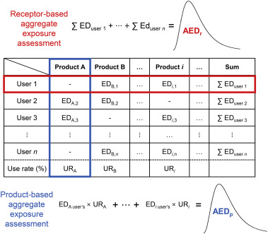 Receptor-based aggregate exposure assessment of phthalates