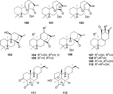 Bryophytes as a source of bioactive volatile terpenoids – A