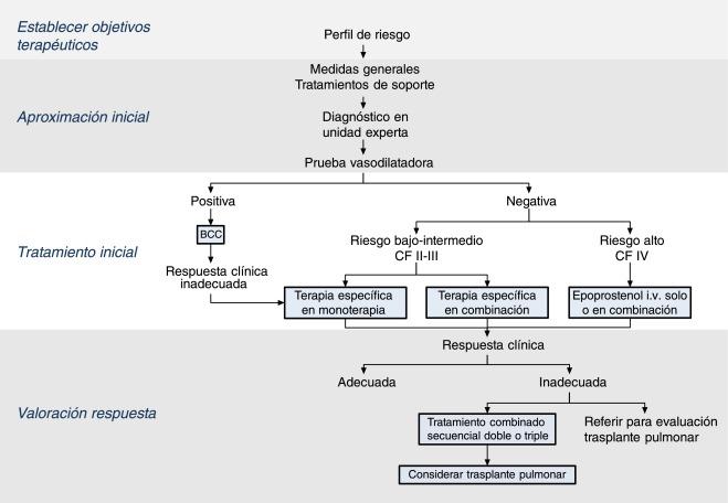 Clasificación de hipertensión pulmonar ecocardiografía cme