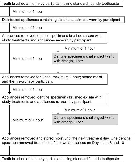 Assessment of tubule occlusion properties of an experimental