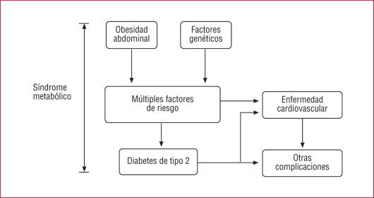 TNF alfa obesidad diabetes corazón