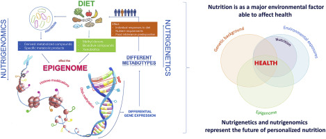 Primers on nutrigenetics and nutri(epi)genomics: Origins and