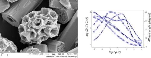 Sodium zinc phosphate as a corrosion inhibitive pigment