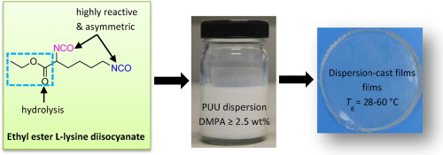 Bio-based poly(urethane urea) dispersions with low internal