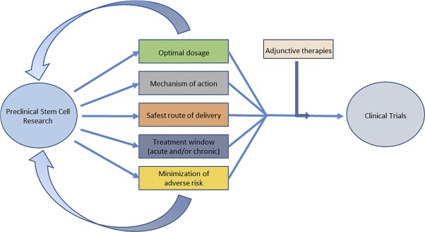 Stem cell therapy for abrogating stroke-induced neuroinflammation