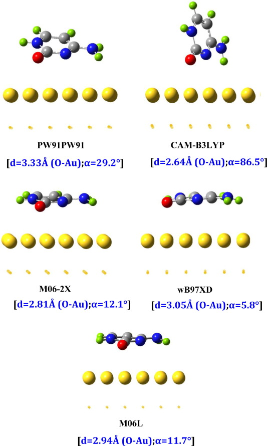 Description of adenine and cytosine on Au(111) nano surface