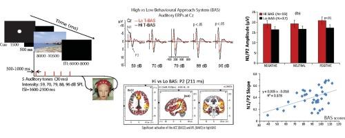 Plasma levels of interleukin- 1 p and interleukin-6 in schizophrenia ...