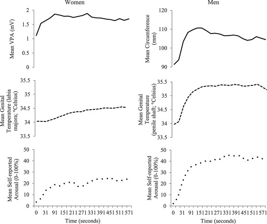 Examining the time course of genital and subjective sexual responses