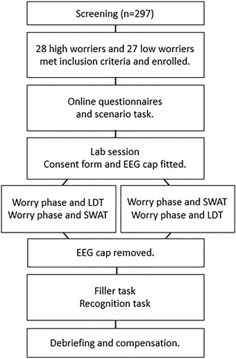 Using event-related potential and behavioural evidence to