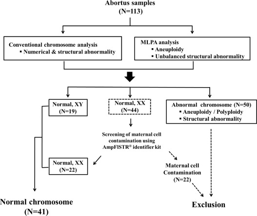 Impact of RFC1, MTHFR, and MTHFD1 polymorphism on unexplained