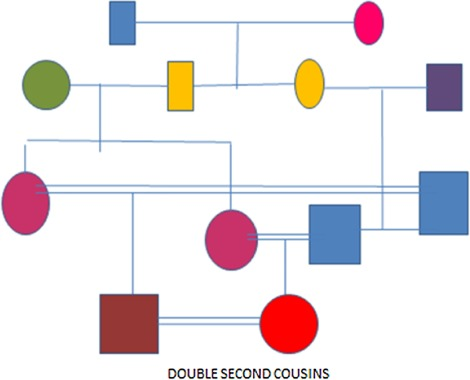 A review of the reproductive consequences of consanguinity