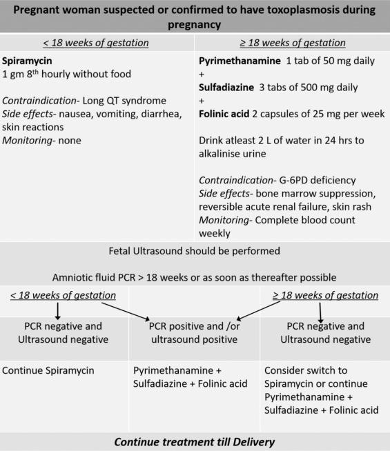 toxoplasmoza tratament