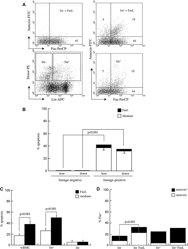 Expression of Fas and Fas-ligand in donor hematopoietic stem