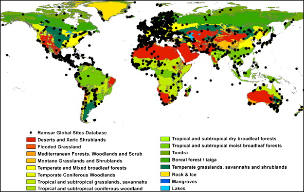 Remote sensing and gis for wetland inventory mapping and change distribution of ramsar sites across wwf terrestrial biomes gumiabroncs Image collections