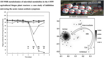 1H NMR metabolomics of microbial metabolites in the four MW