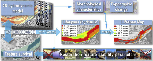 Hydro-morphological parameters generate lifespan maps for stream