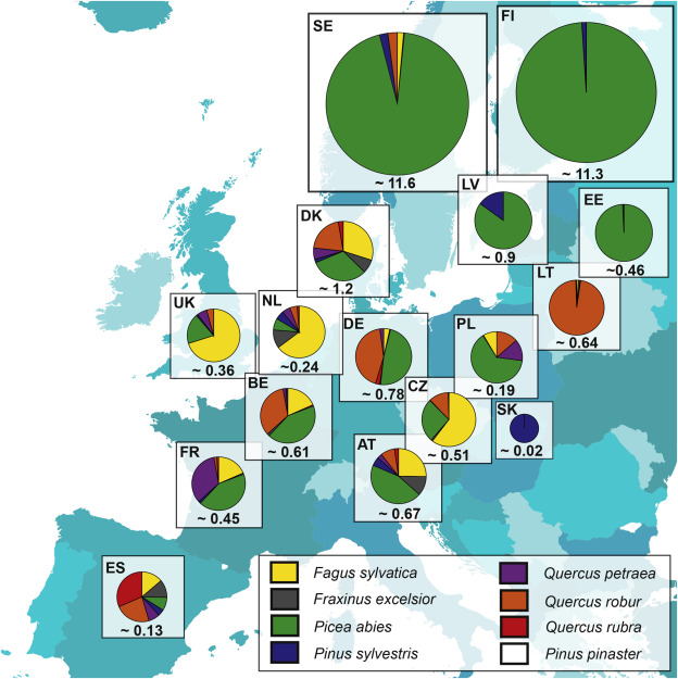 Crossing borders – European forest reproductive material