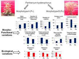 Phenotypic variations alter the ecological impact of