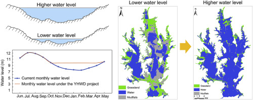 Predicting hydrological impacts of the Yangtze-to-Huaihe Water