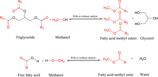Advances in nano-catalysts based biodiesel production from