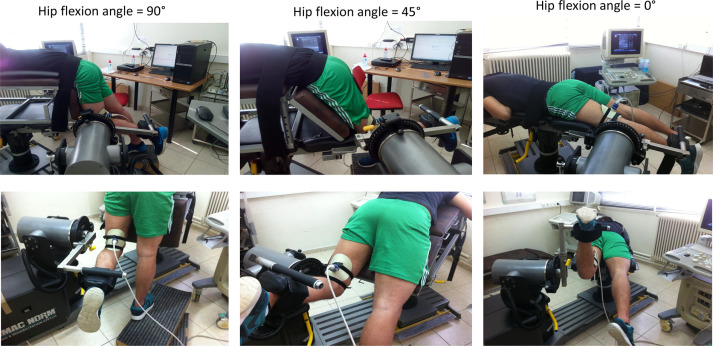 Reliability of Sonographic Assessment of Biceps Femoris