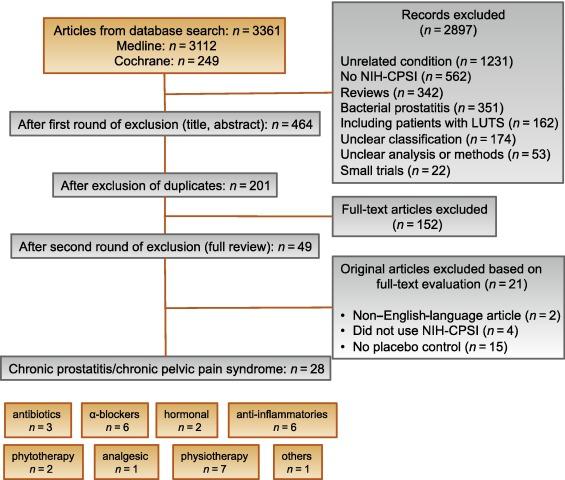Prostatitis Phyto kezelése