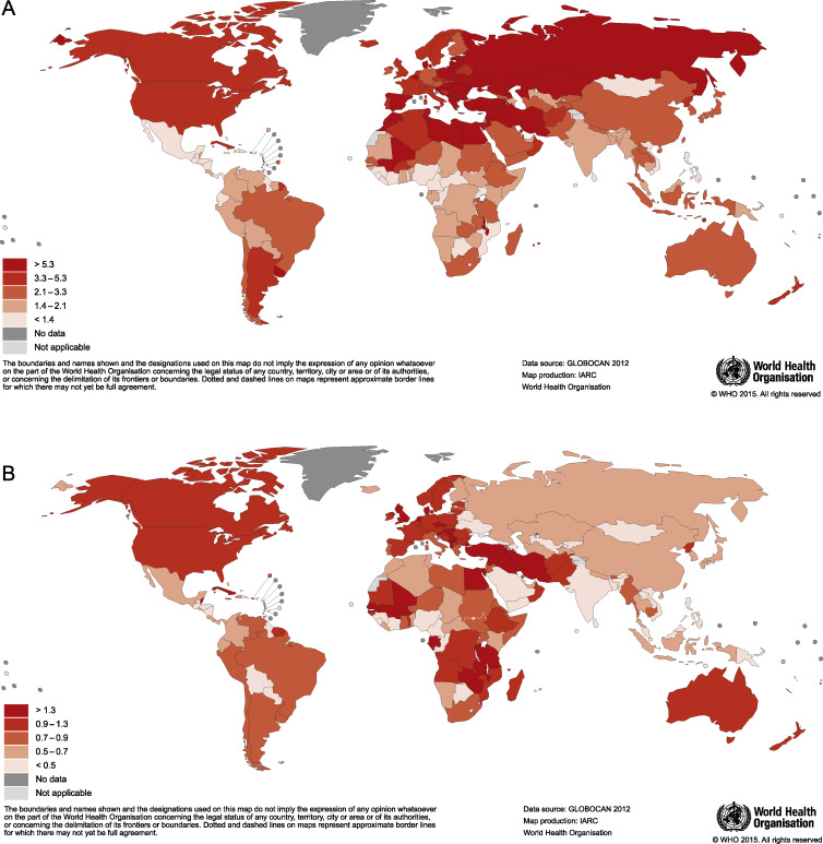 Bladder Cancer Incidence And Mortality A Global Overview