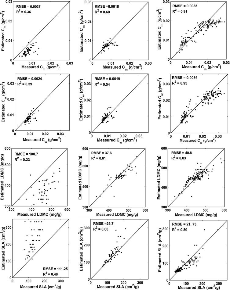 Estimating Leaf Functional Traits By Inversion Of Prospect